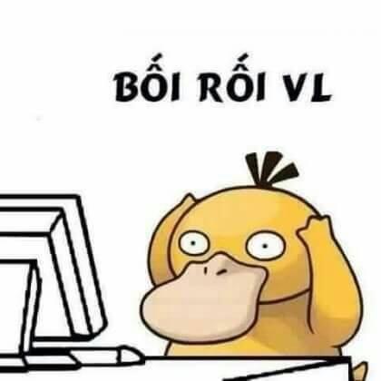 Thú mỏ vịt vàng bối rối vl trước màn hình máy tính
