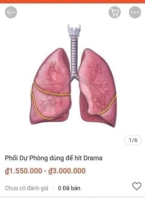 Mặt hàng phổi dự phòng dùng để hít drama trên shopee