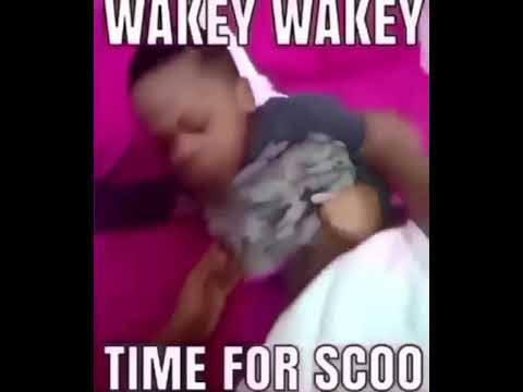 Wakey wakey, time for scoo (sờ cu)